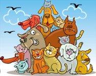 Cuento de animales sobre el orden